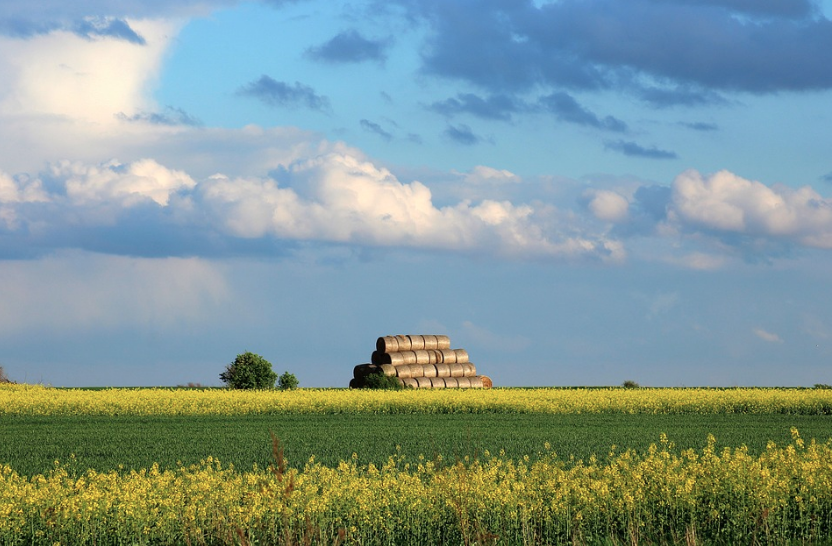What to keep in mind when purchasing rural property