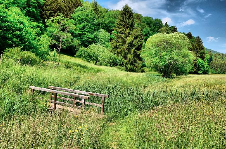 Three Factors In Choosing Land For Homestead Living