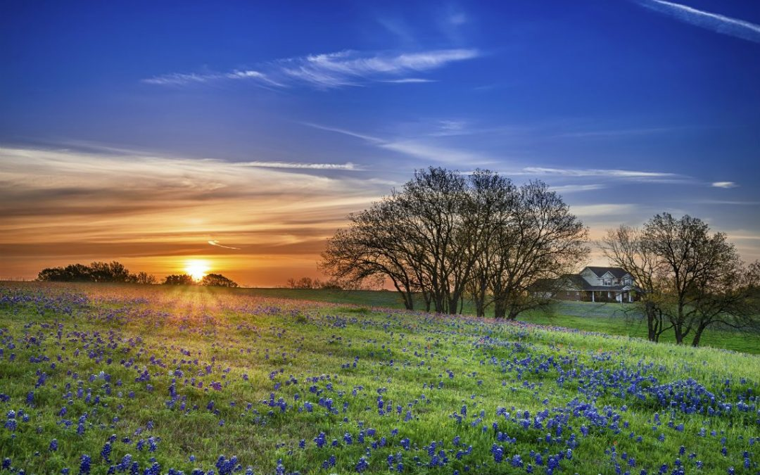 Buying Land in Texas
